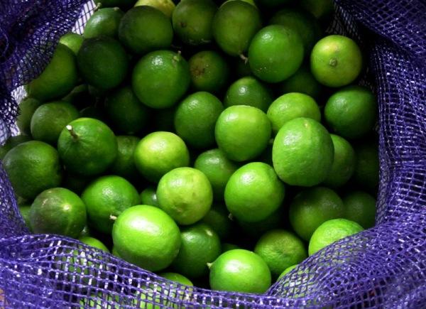 Color verd lima