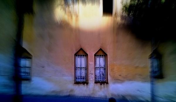 Selectives finestres del carrer