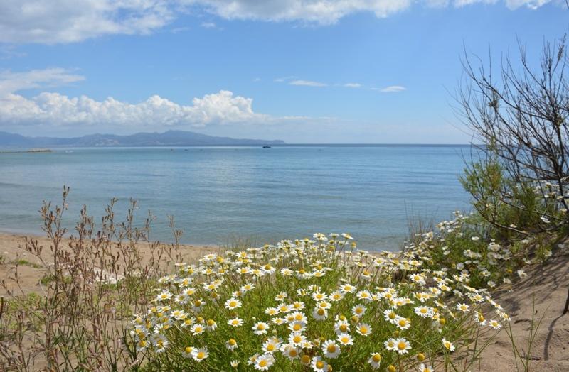 calor d'estiu costanera