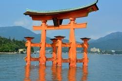 Tori del santuari d'Itsukushima amb la marea alta