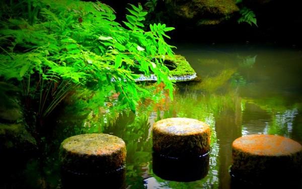 Racó , meditació  al jardí