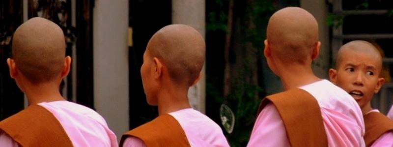 Monges birmanes
