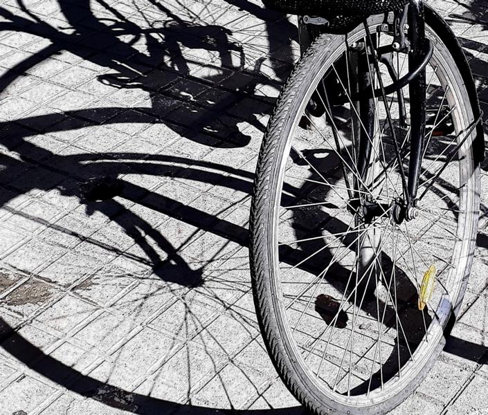 rodes de bicicleta i les seves ombres 2