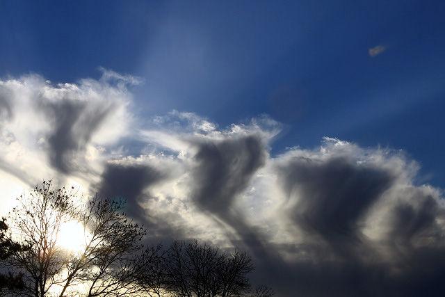 Rays of Glory