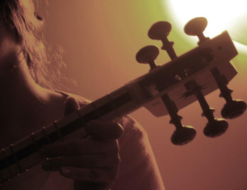 Taar , Iranian musical instrument