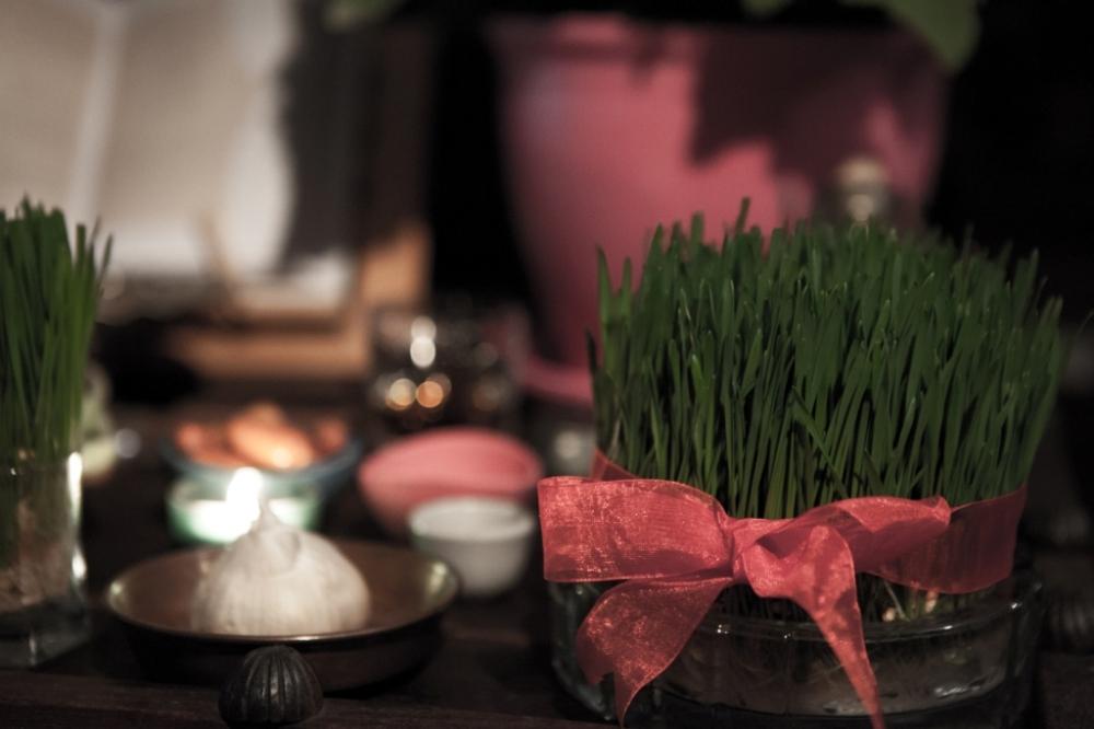 Happy Norouz!  سالِ نو مبارک!
