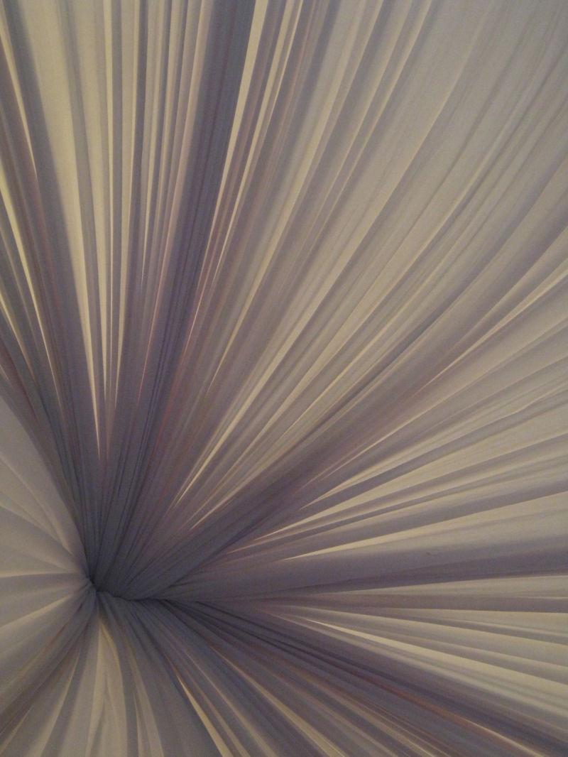Hibiscus, Tent, white,