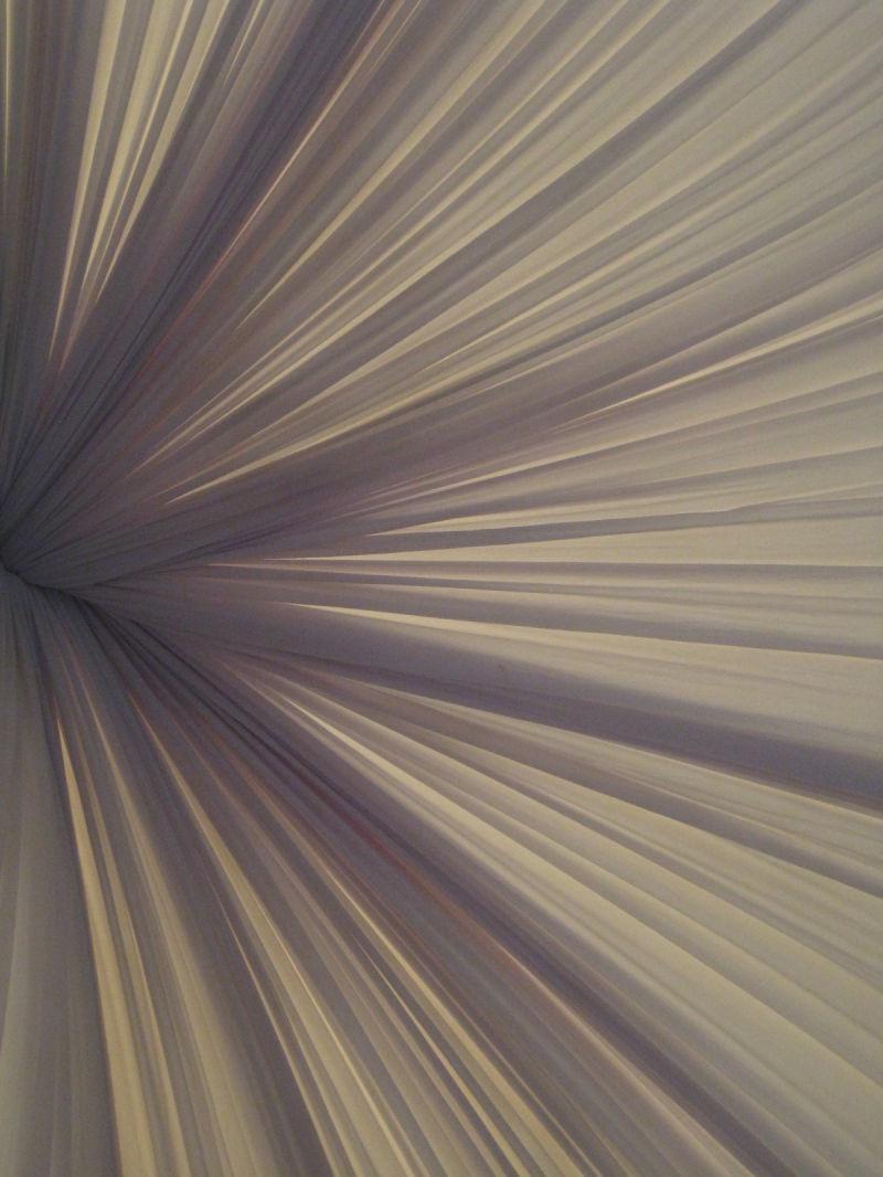 tent, flower, petal, white,