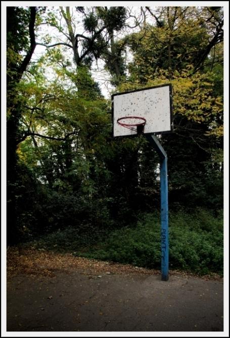BasketFall
