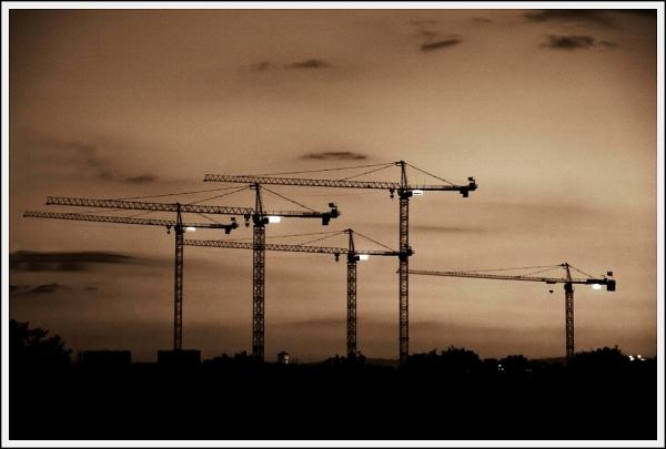 Cranes@Dusk