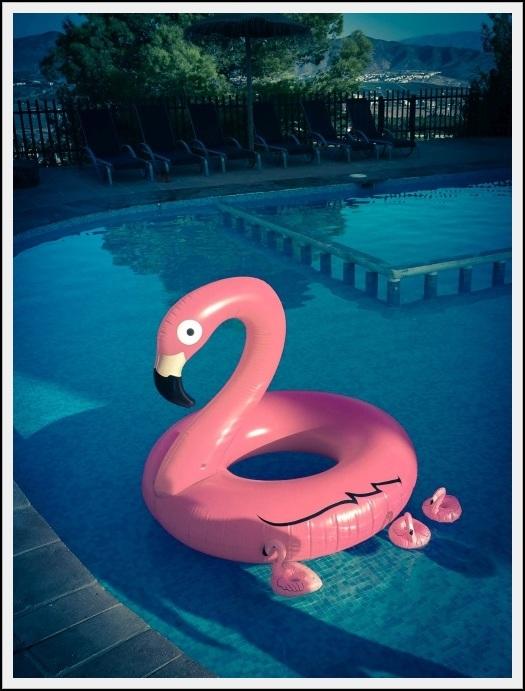 PinkTribe