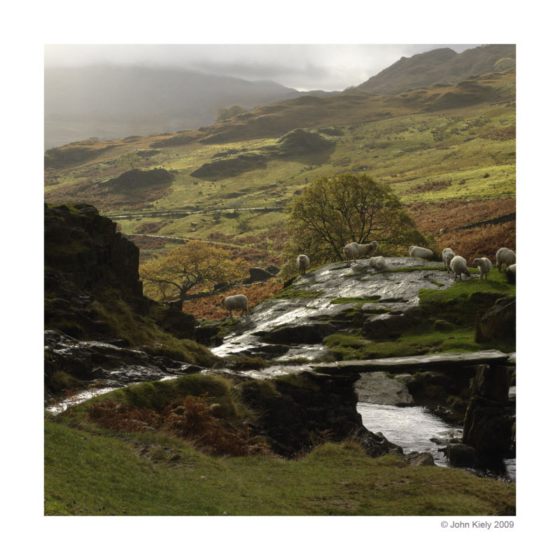Images from Nant Gwynant