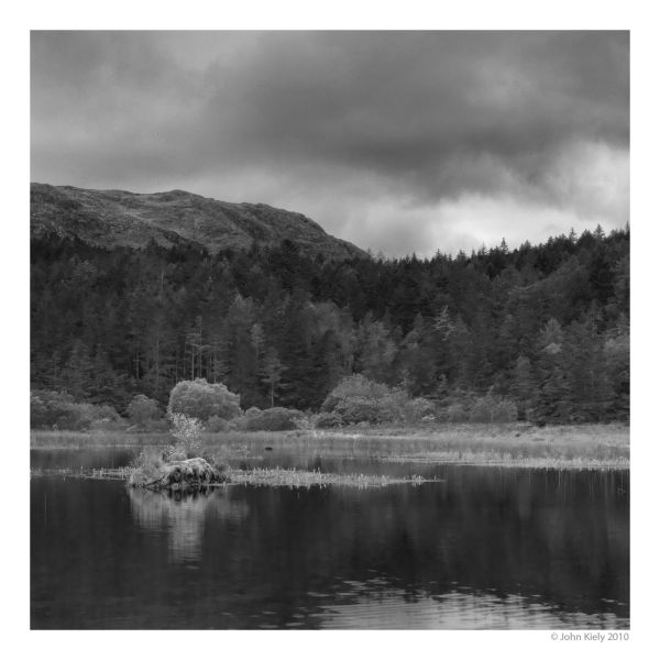 Beddgelert Forrest, Snowdonia, North wales