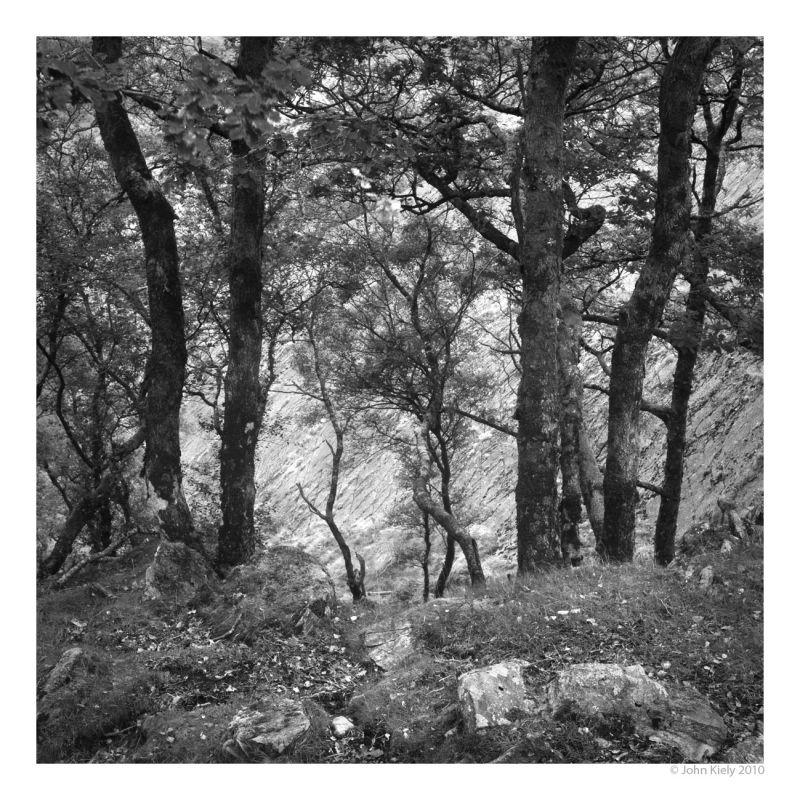 Black & white landscape photograph fromCwm Bychan