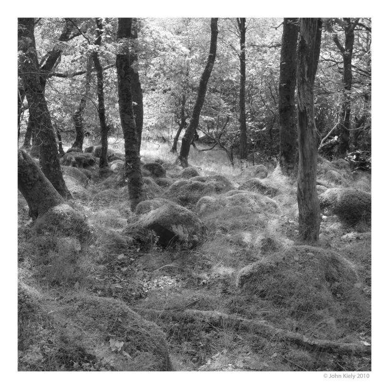 Black & white landsape photograph tomen-y-mur