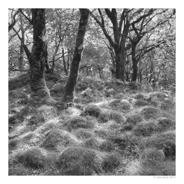 Black 7 white landscape photograph tomen-y-mur