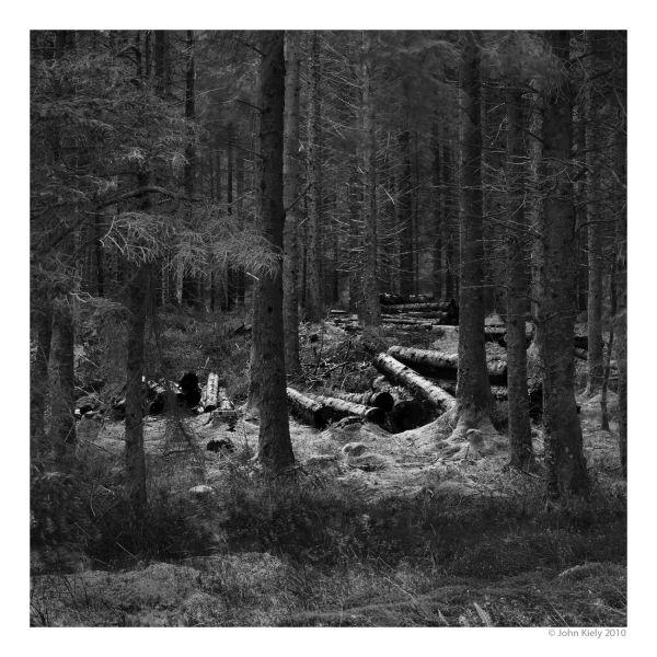 Black & white landscape photograph of Rhinog