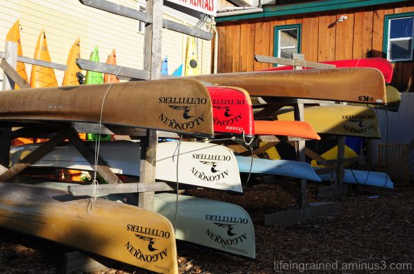 Canoes galore!