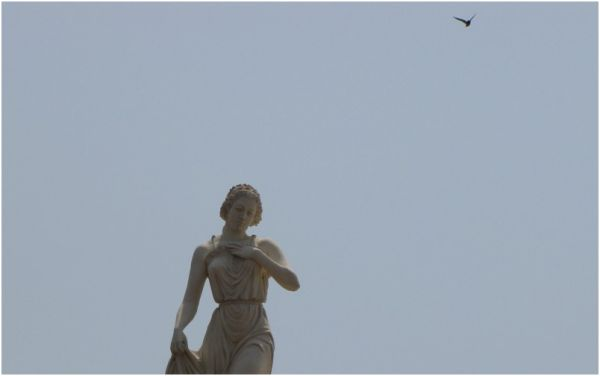 A bird coming to a female statue