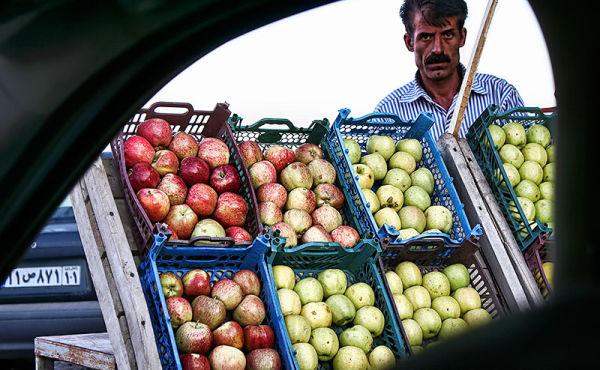 Apple Seller