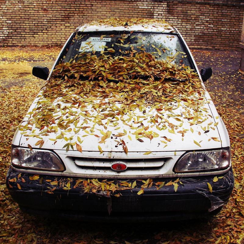 برگ های خزانی