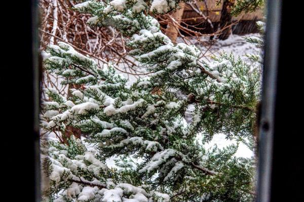 اولین برف پاییزی تبریز