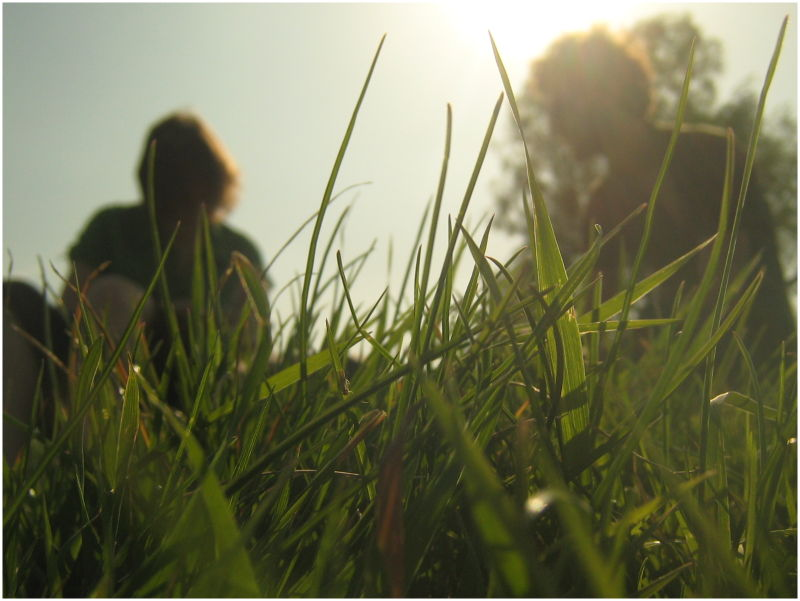 Lying on the grass on a bright sunshiny day