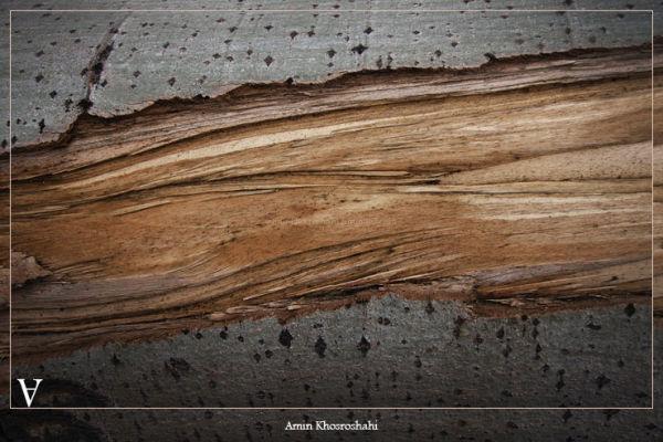 dry wood river
