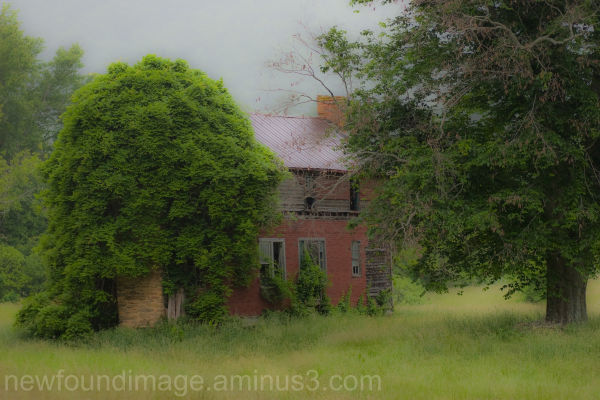 Abandoned House in Field.