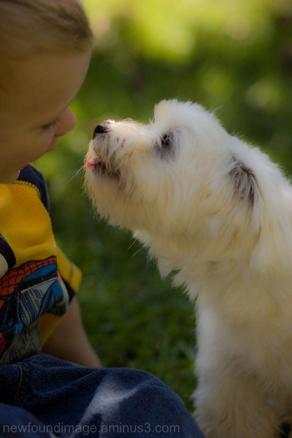 Dog and child.