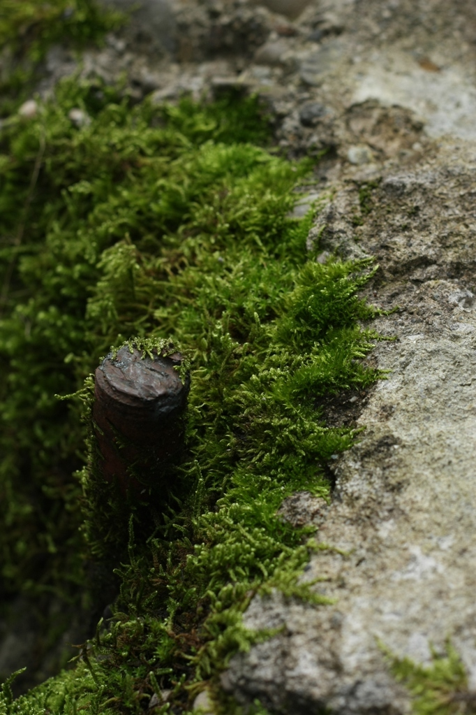 green on the stone 2