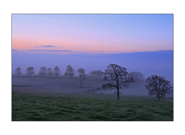 sunsrise over misty fields and trees