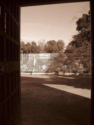 Sepia door view