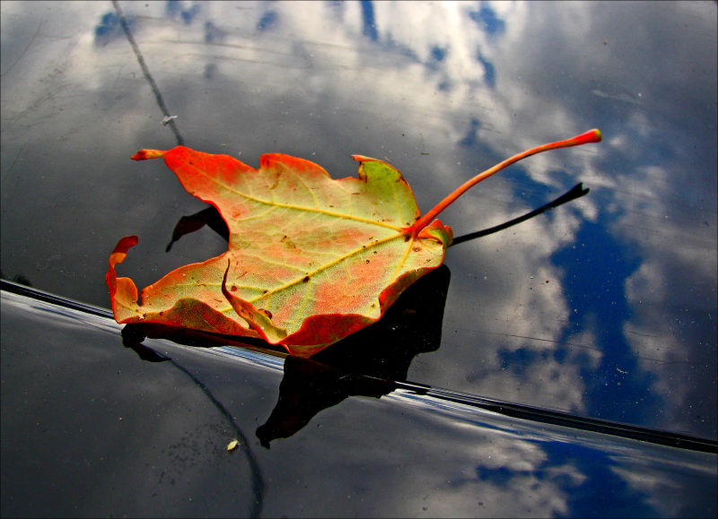 As Autumn Approaches