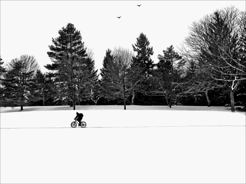 biker through snow
