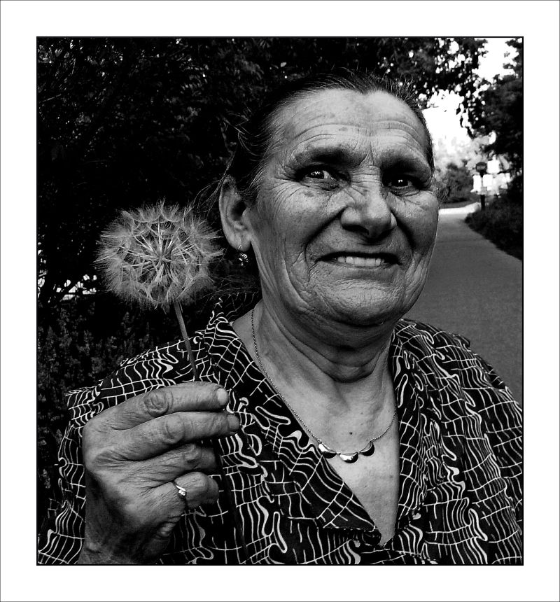 woman with dandelion  (i)