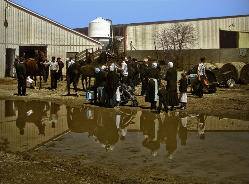 Mennonites Gathering