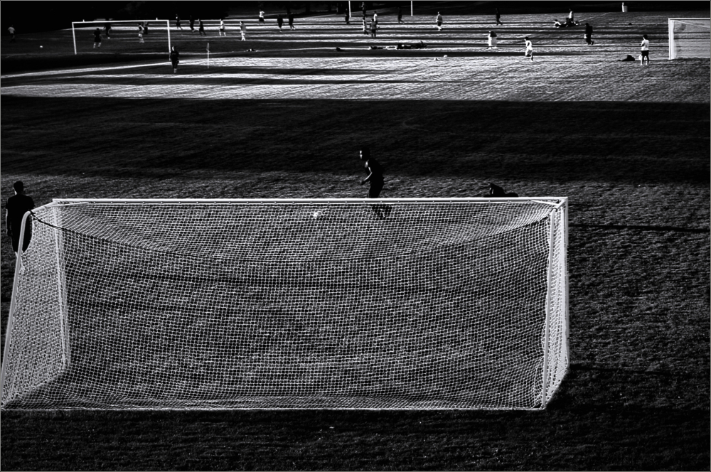 Soccer Field Dreams