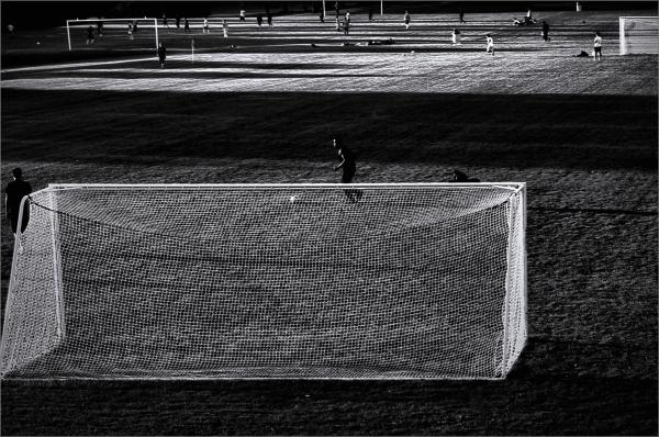 Soccer Field Dreams