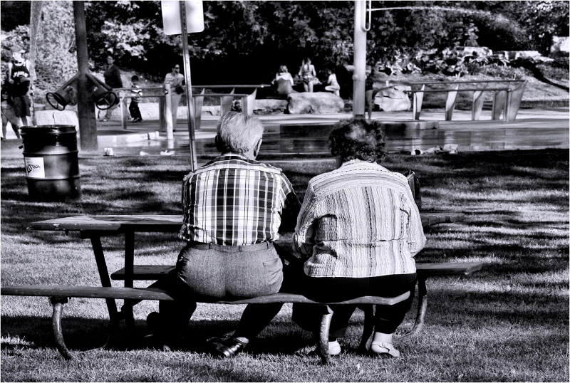 Hot Summer Day in a Park