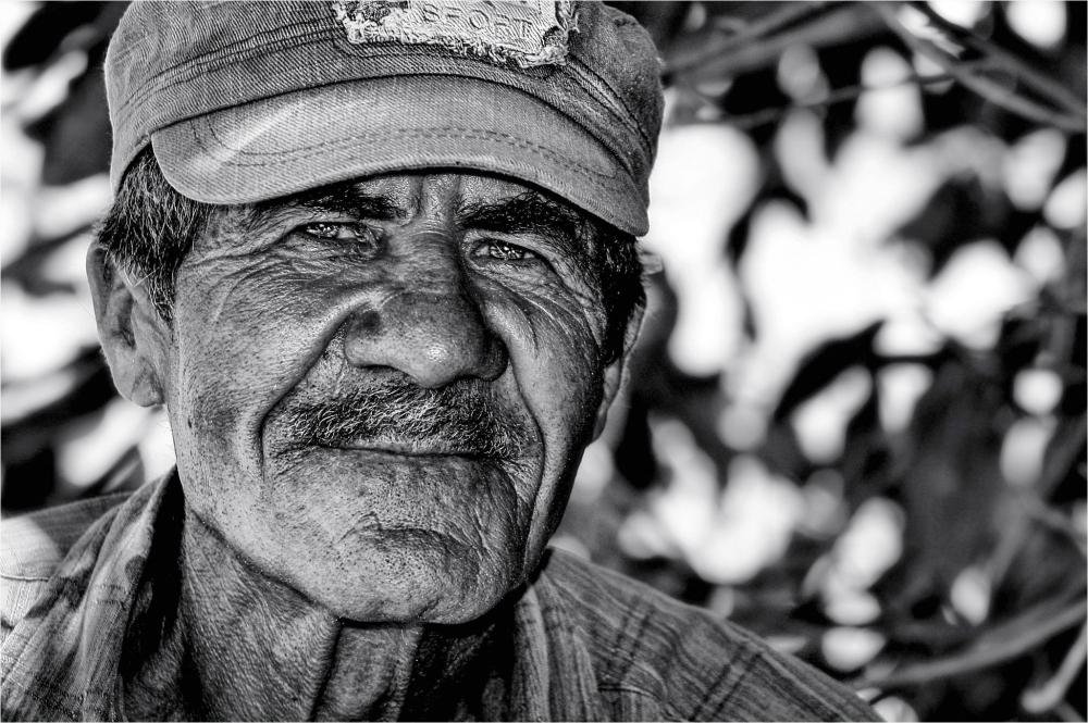 Cuban Gardener