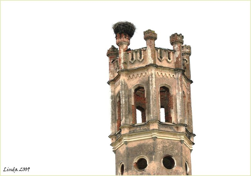 old tower with stork nest
