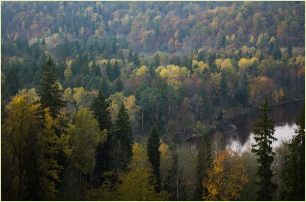 autumn in sigulda