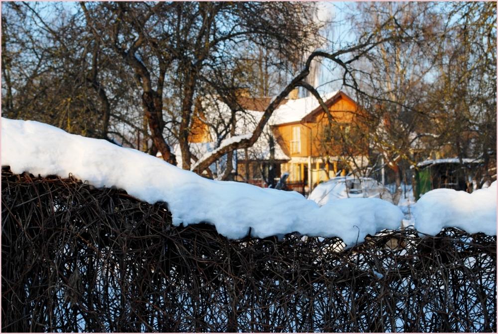a house in zolitūde