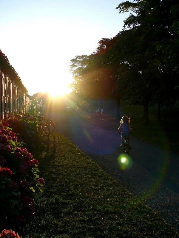 Avancer vers la lumière de la vie