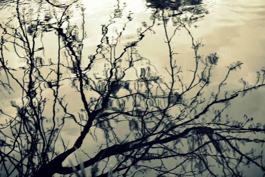 Plonger dans les méandres des souvenirs