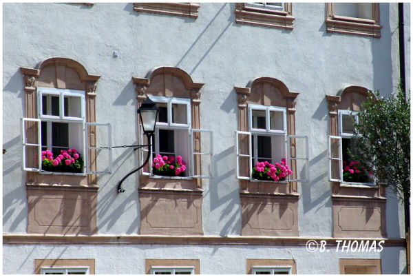 Salzburg Windows