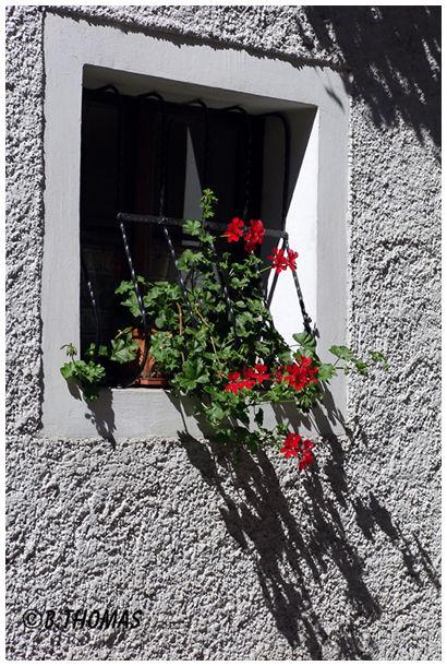 Dürnstein Window
