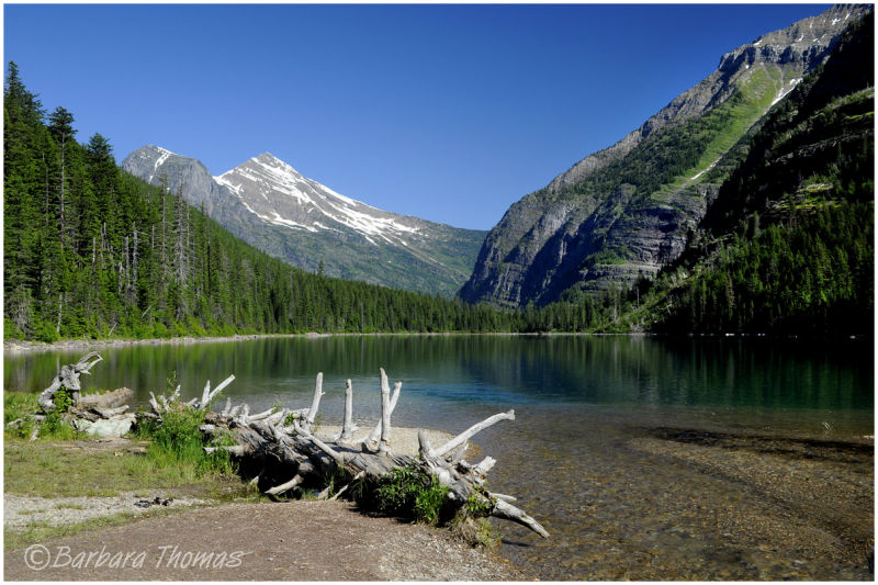 Avalanche Lake Morning