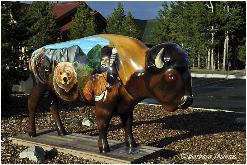 Painted Buffalo